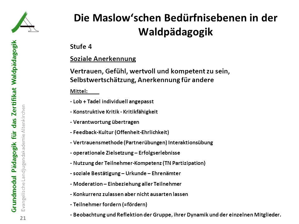 Die Maslow'schen Bedürfnisebenen in der Waldpädagogik