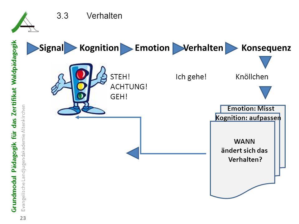 Signal Kognition Emotion Verhalten Konsequenz