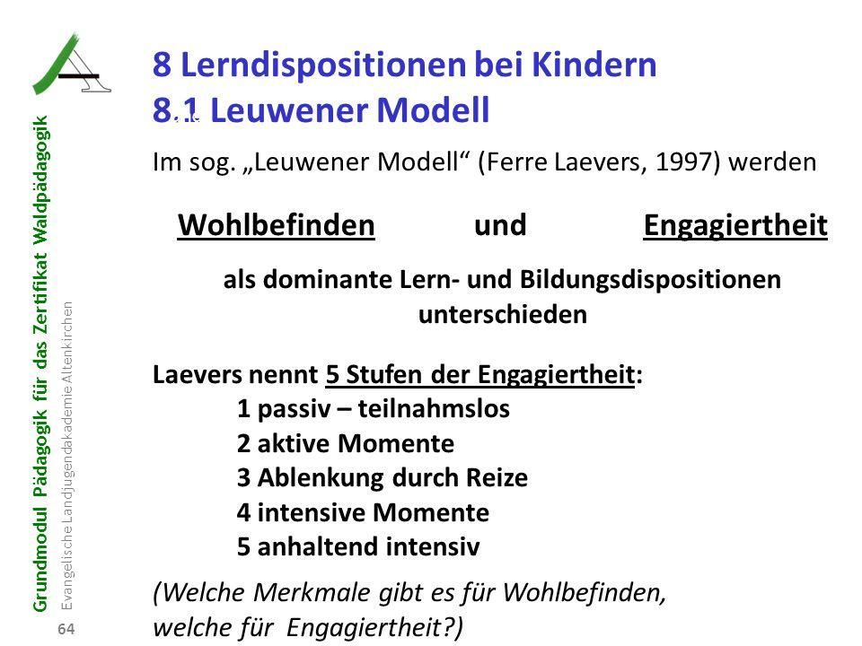 8 Lerndispositionen bei Kindern 8.1 Leuwener Modell