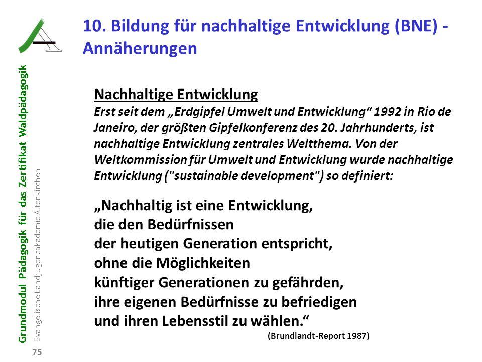 10. Bildung für nachhaltige Entwicklung (BNE) - Annäherungen
