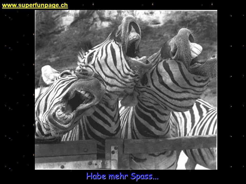 www.superfunpage.ch Habe mehr Spass...