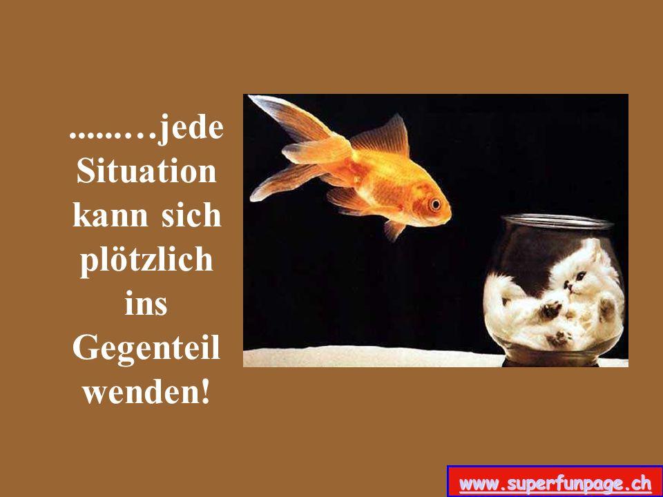 ......…jede Situation kann sich plötzlich ins Gegenteil wenden!