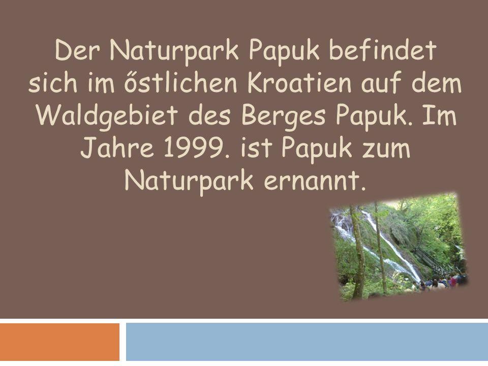 Der Naturpark Papuk befindet sich im őstlichen Kroatien auf dem Waldgebiet des Berges Papuk.