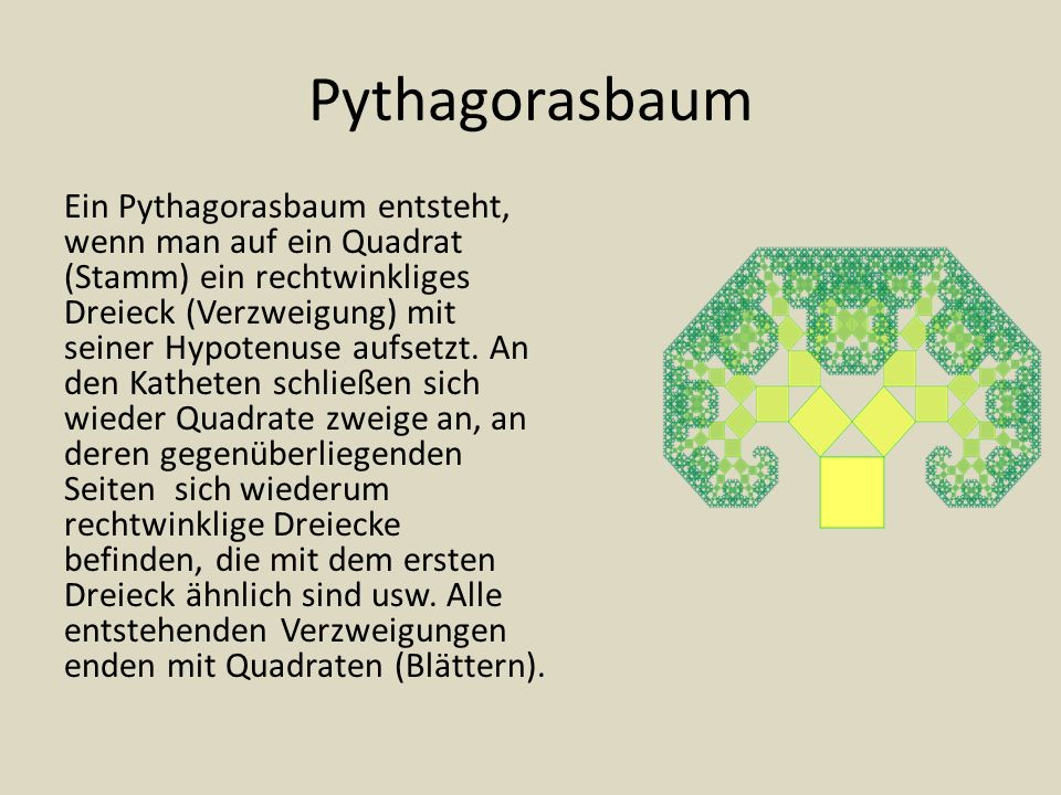 Pythagorasbaum