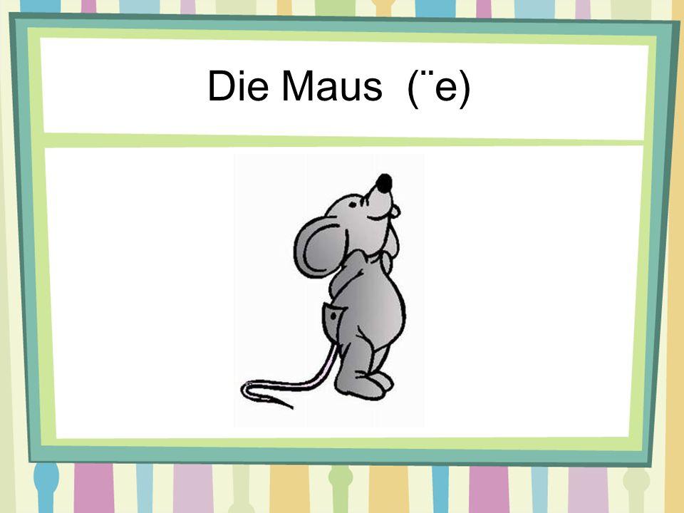 Die Maus (¨e)