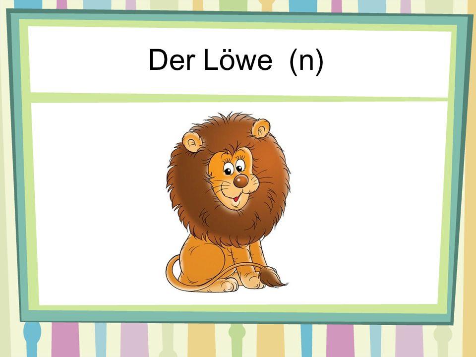 Der Löwe (n)
