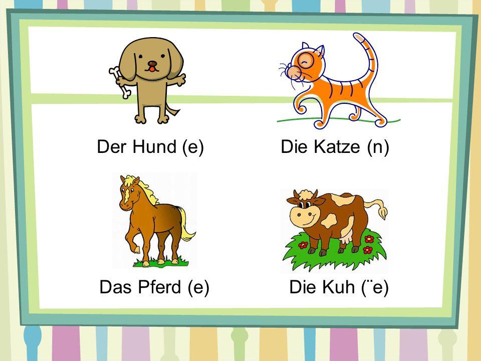 Der Hund (e) Die Katze (n) Das Pferd (e) Die Kuh (¨e)