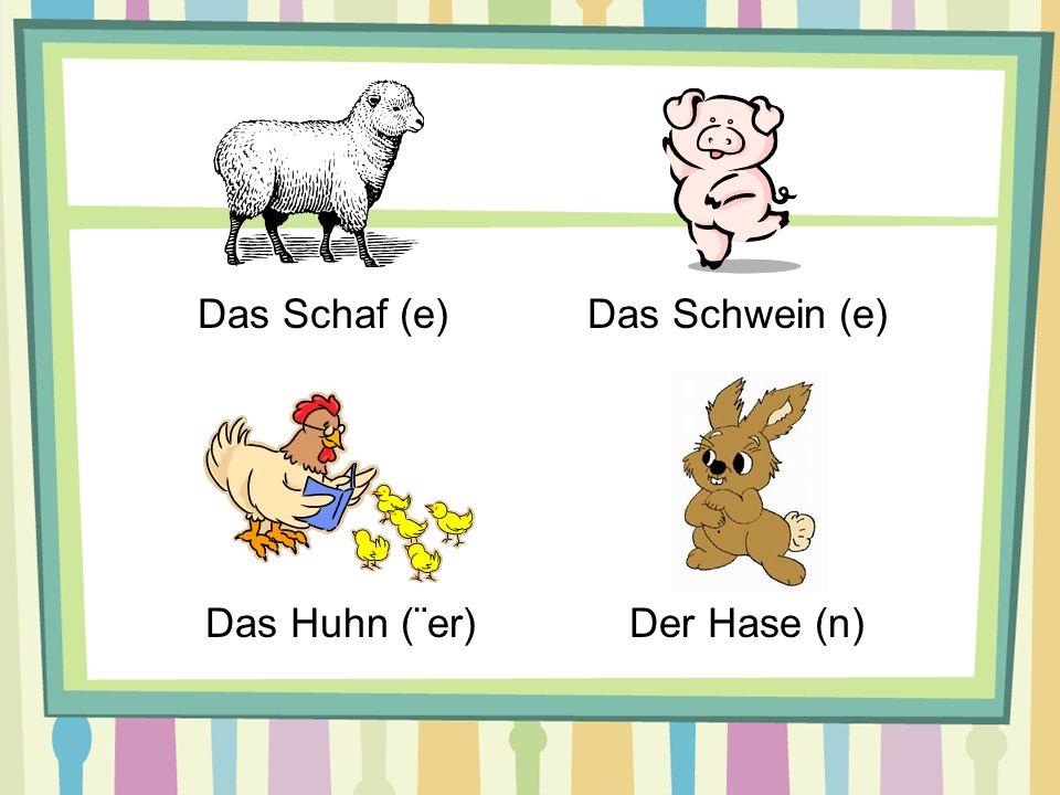 Das Schaf (e) Das Schwein (e) Das Huhn (¨er) Der Hase (n)