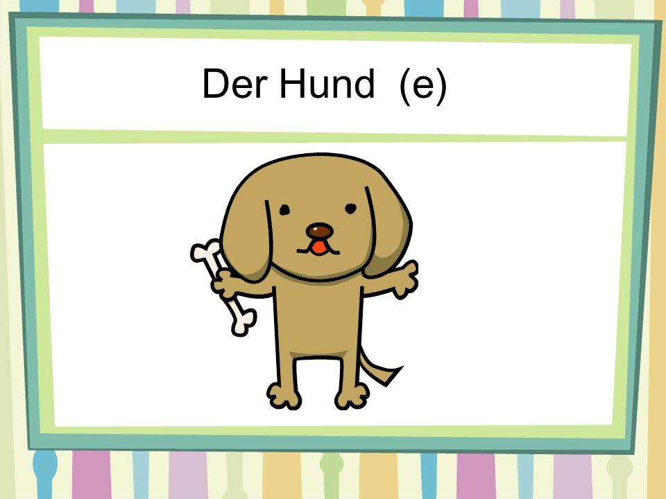 Der Hund (e)