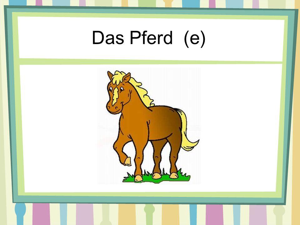 Das Pferd (e)