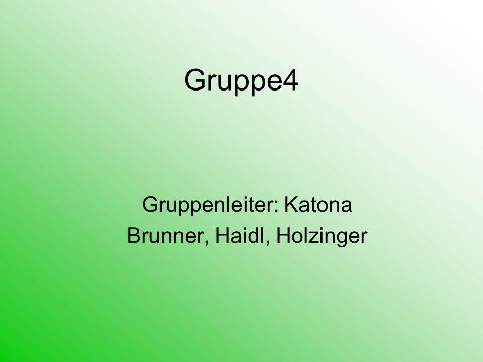 Gruppenleiter: Katona Brunner, Haidl, Holzinger