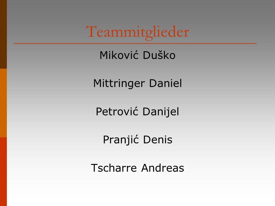 Teammitglieder Miković Duško Mittringer Daniel Petrović Danijel
