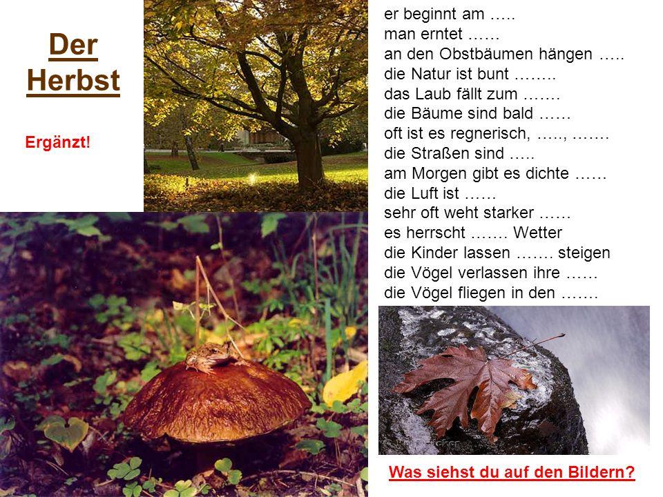 Der Herbst er beginnt am ….. man erntet ……