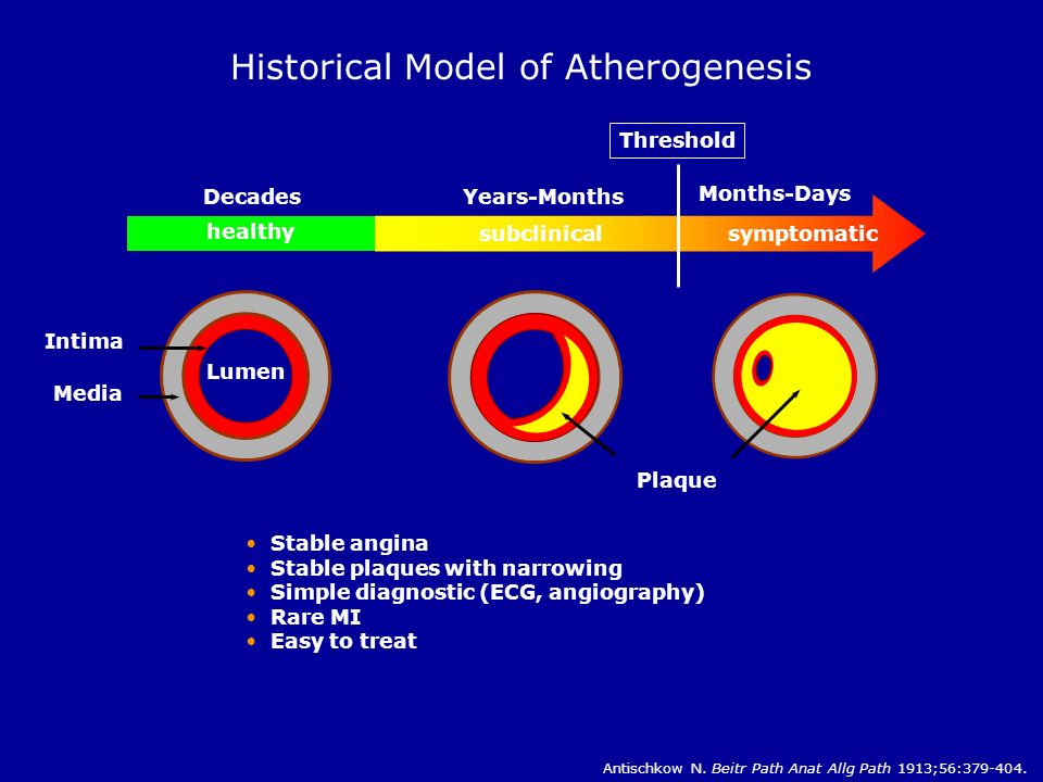 Historical Model of Atherogenesis