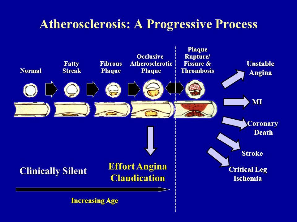 Atherosclerosis: A Progressive Process