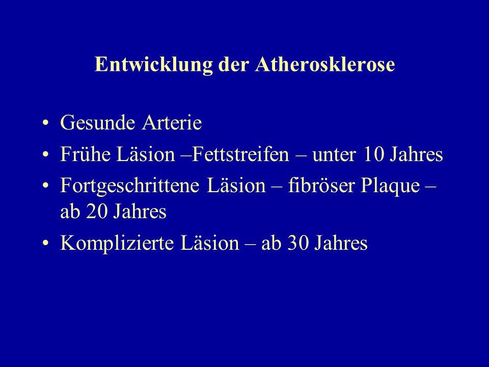 Entwicklung der Atherosklerose