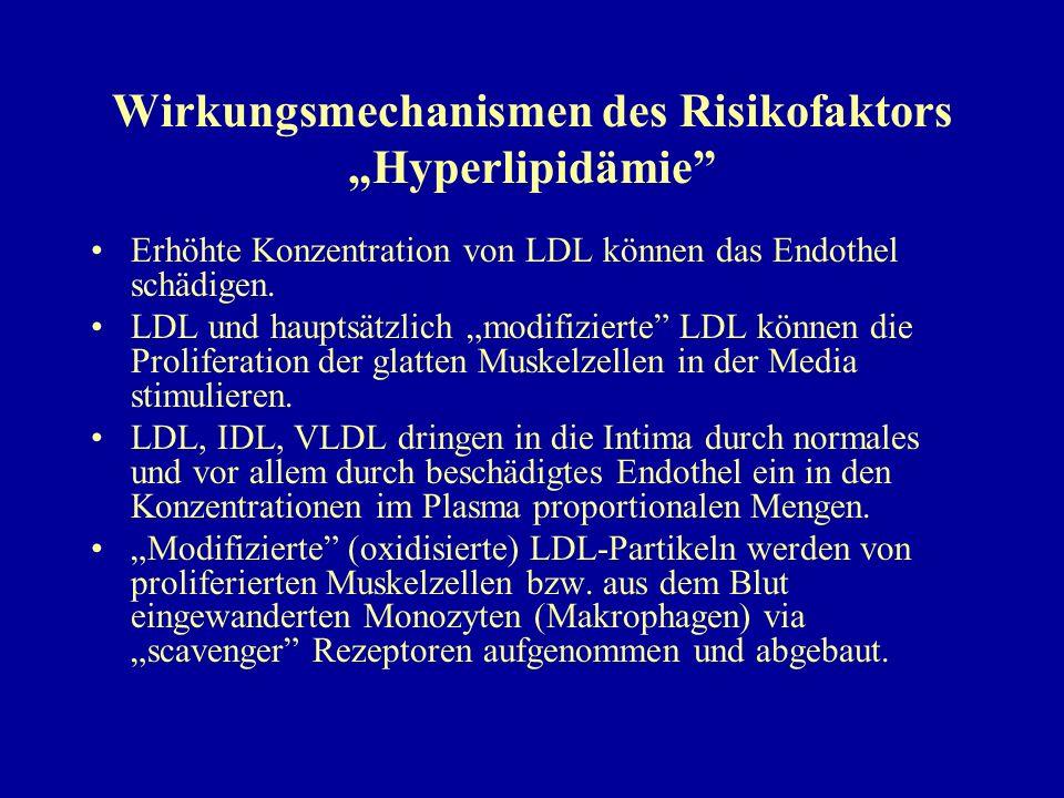 """Wirkungsmechanismen des Risikofaktors """"Hyperlipidämie"""