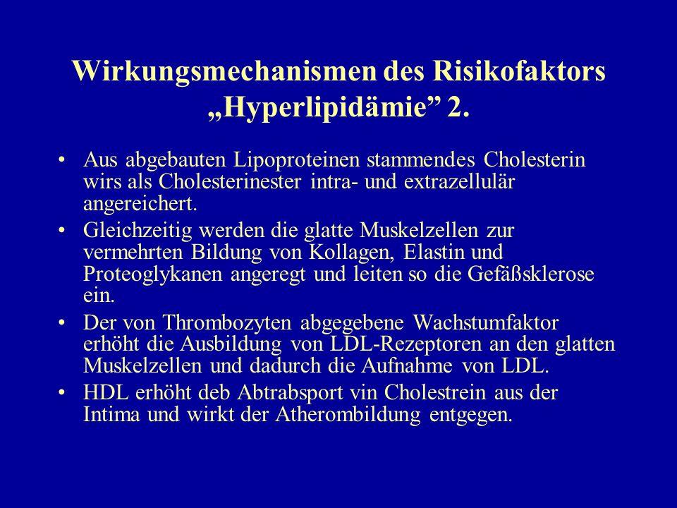 """Wirkungsmechanismen des Risikofaktors """"Hyperlipidämie 2."""