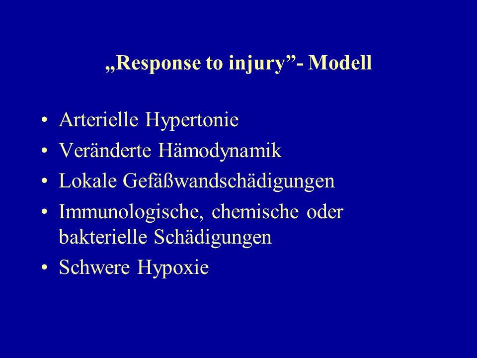 """Response to injury - Modell"