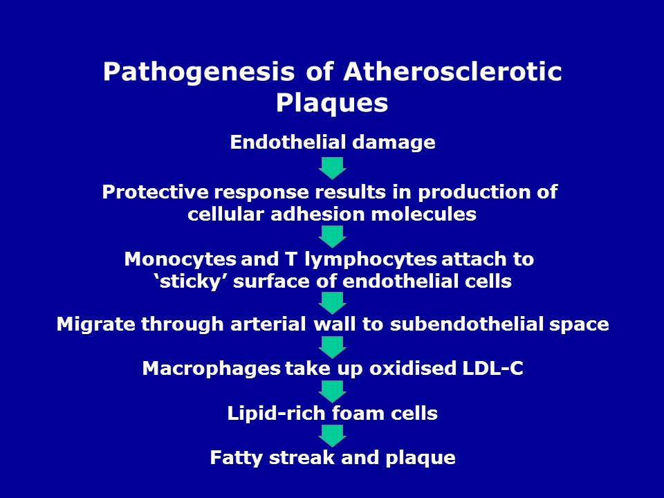 Pathogenesis of Atherosclerotic Plaques