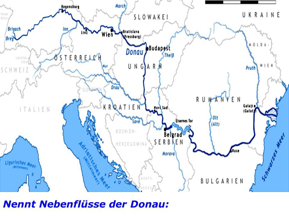 Nennt Nebenflüsse der Donau: