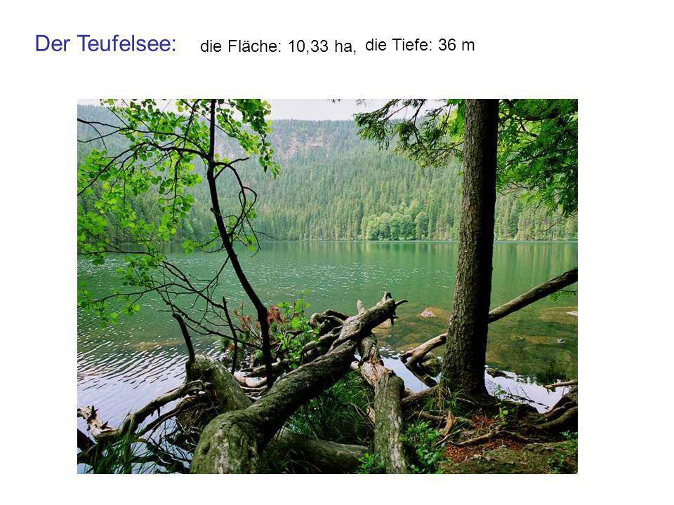 Der Teufelsee: die Fläche: 10,33 ha, die Tiefe: 36 m