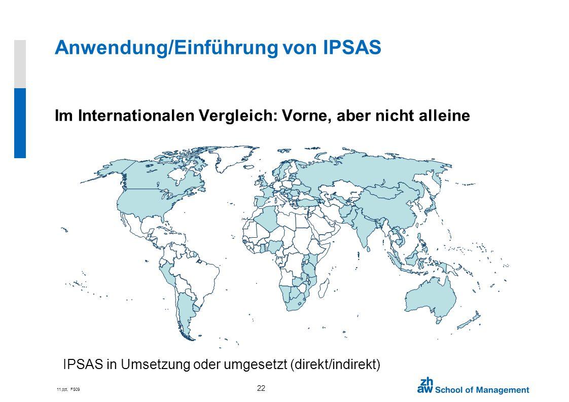 Anwendung/Einführung von IPSAS