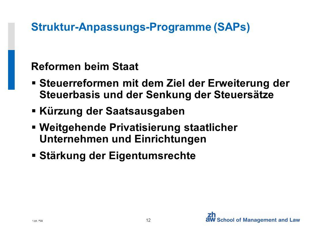 Struktur-Anpassungs-Programme (SAPs)