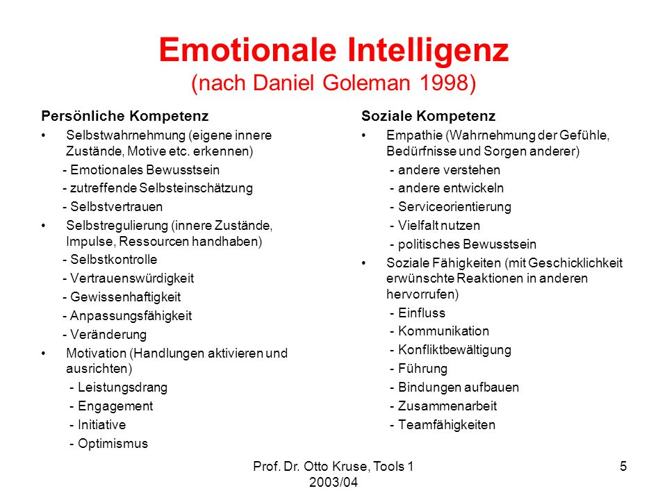 Emotionale Intelligenz (nach Daniel Goleman 1998)