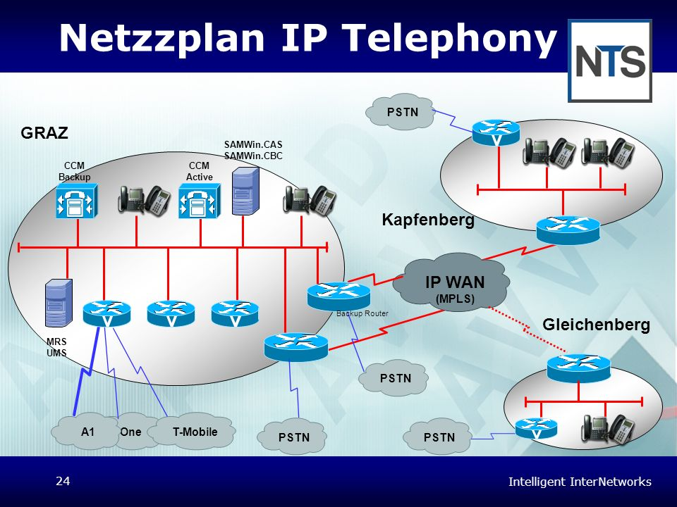 Netzzplan IP Telephony
