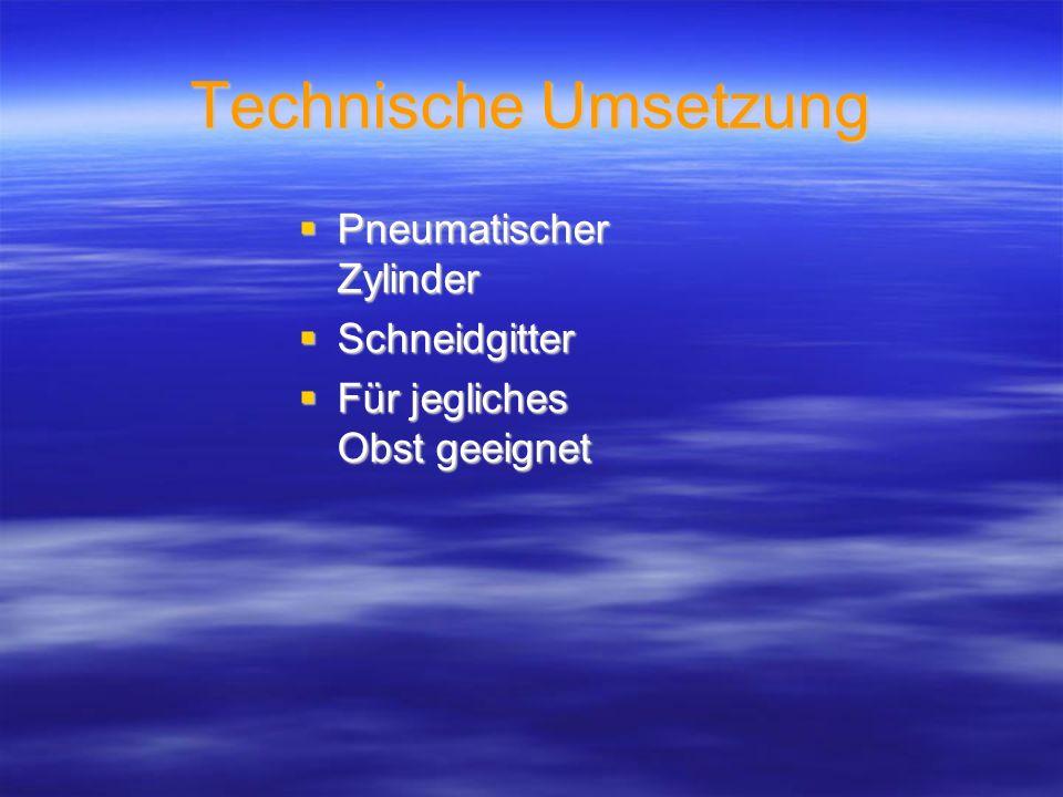 Technische Umsetzung Pneumatischer Zylinder Schneidgitter