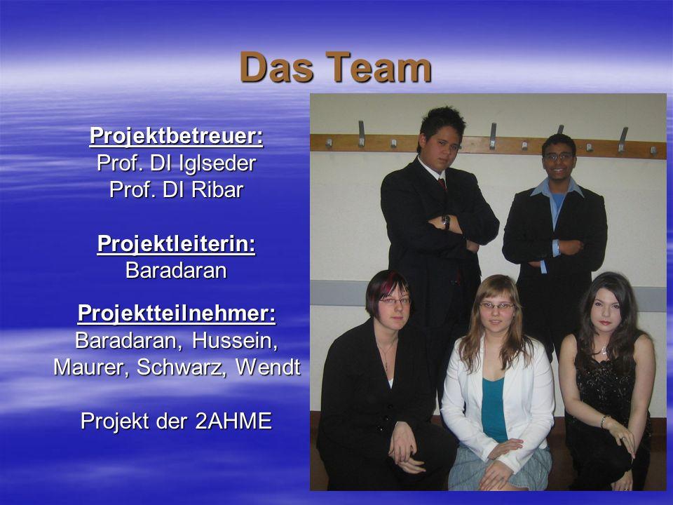 Das Team Projektbetreuer: Prof. DI Iglseder Prof. DI Ribar