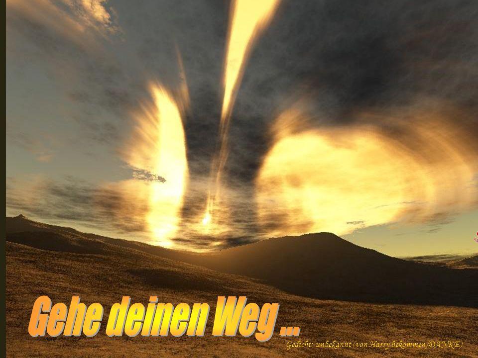 Gehe deinen Weg ... Gedicht: unbekannt (von Harry bekommen/DANKE)