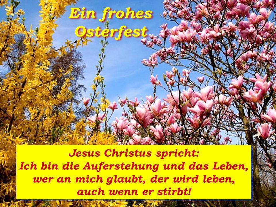 Ein frohes Osterfest Jesus Christus spricht: