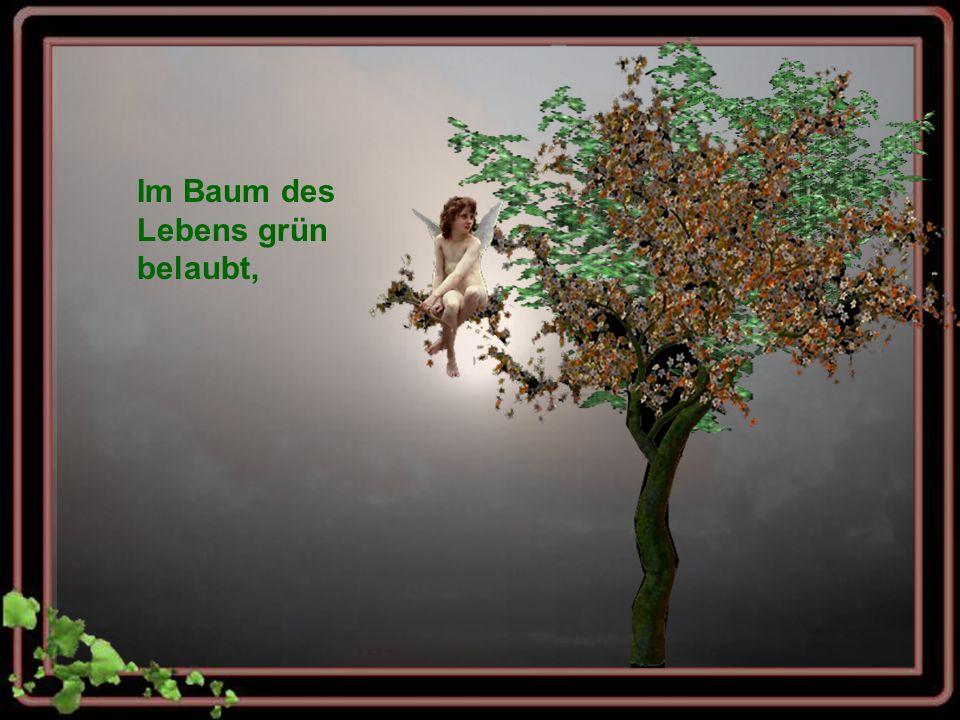 Im Baum des Lebens grün belaubt,