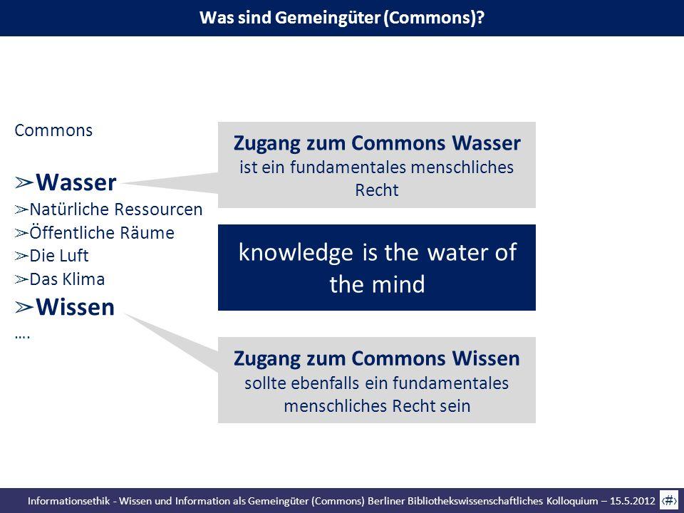 Was sind Gemeingüter (Commons)