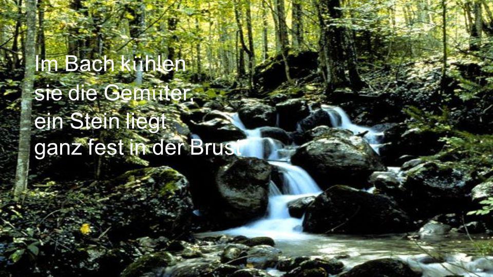 Im Bach kühlen sie die Gemüter, ein Stein liegt ganz fest in der Brust