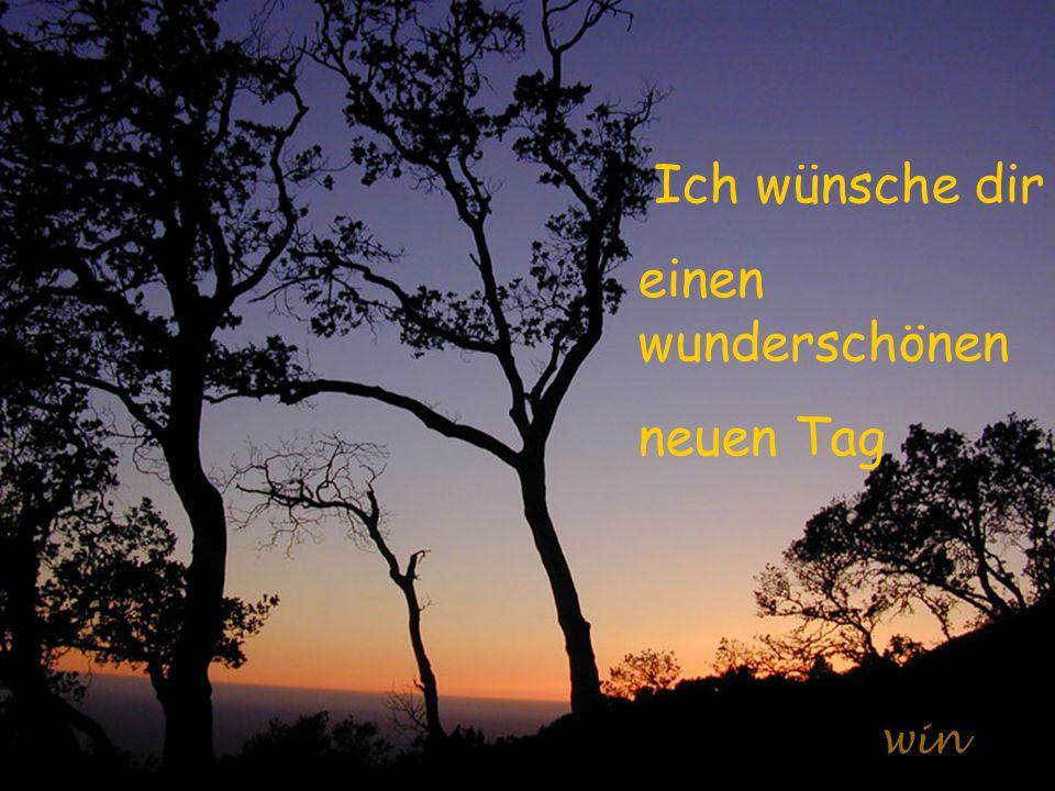 Ich wünsche dir einen wunderschönen neuen Tag win