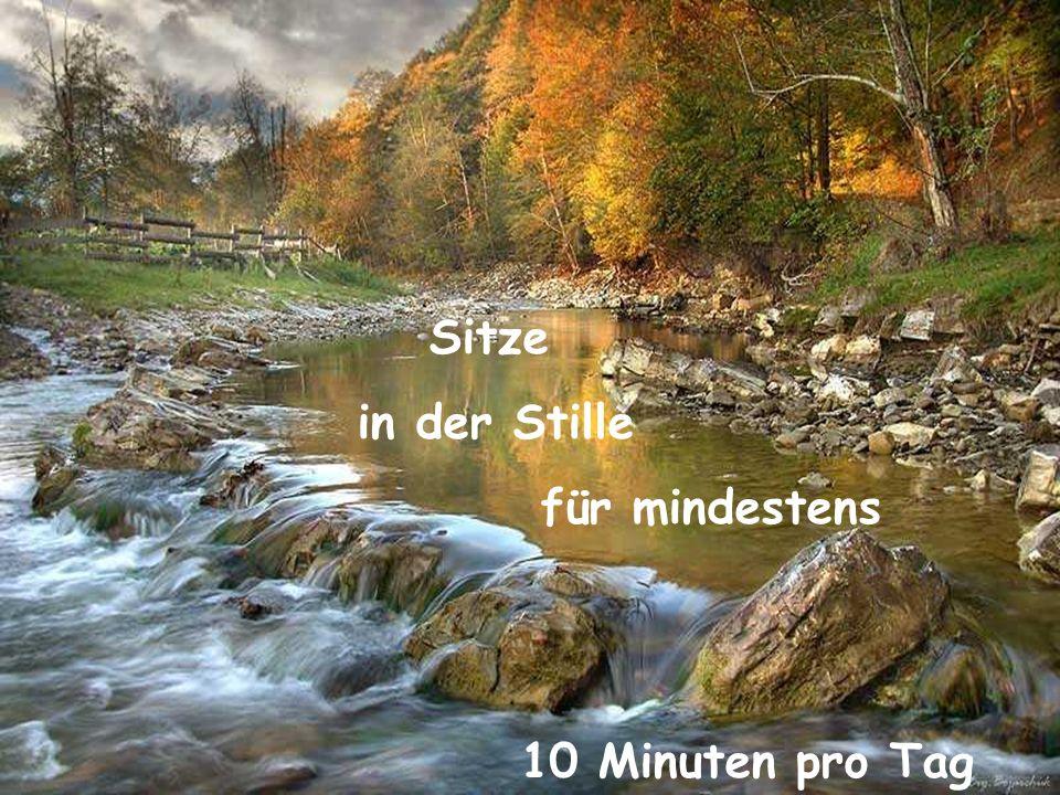 Sitze in der Stille für mindestens 10 Minuten pro Tag 3