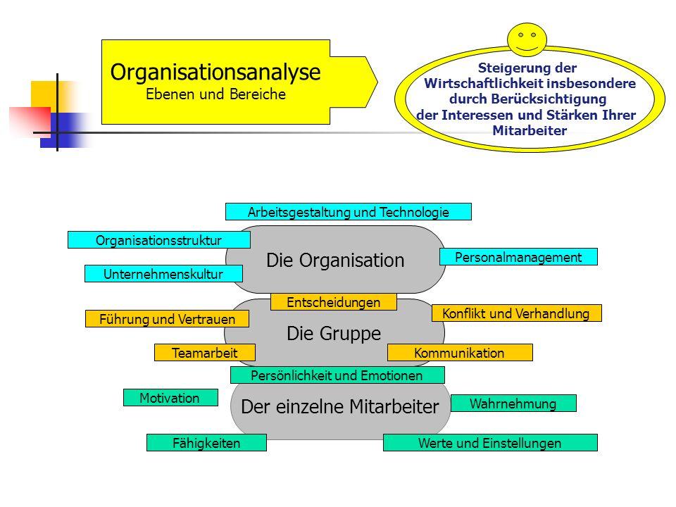 Organisationsanalyse Ebenen und Bereiche