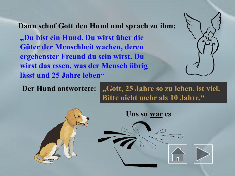 Dann schuf Gott den Hund und sprach zu ihm: