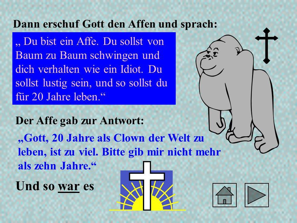 Und so war es Dann erschuf Gott den Affen und sprach: