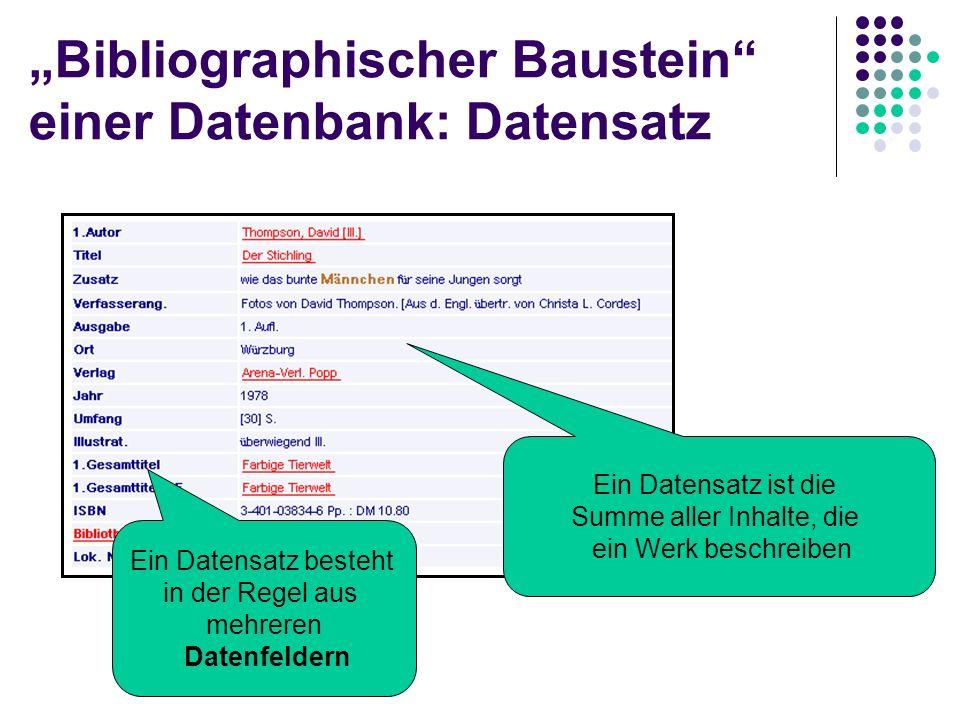 """""""Bibliographischer Baustein einer Datenbank: Datensatz"""