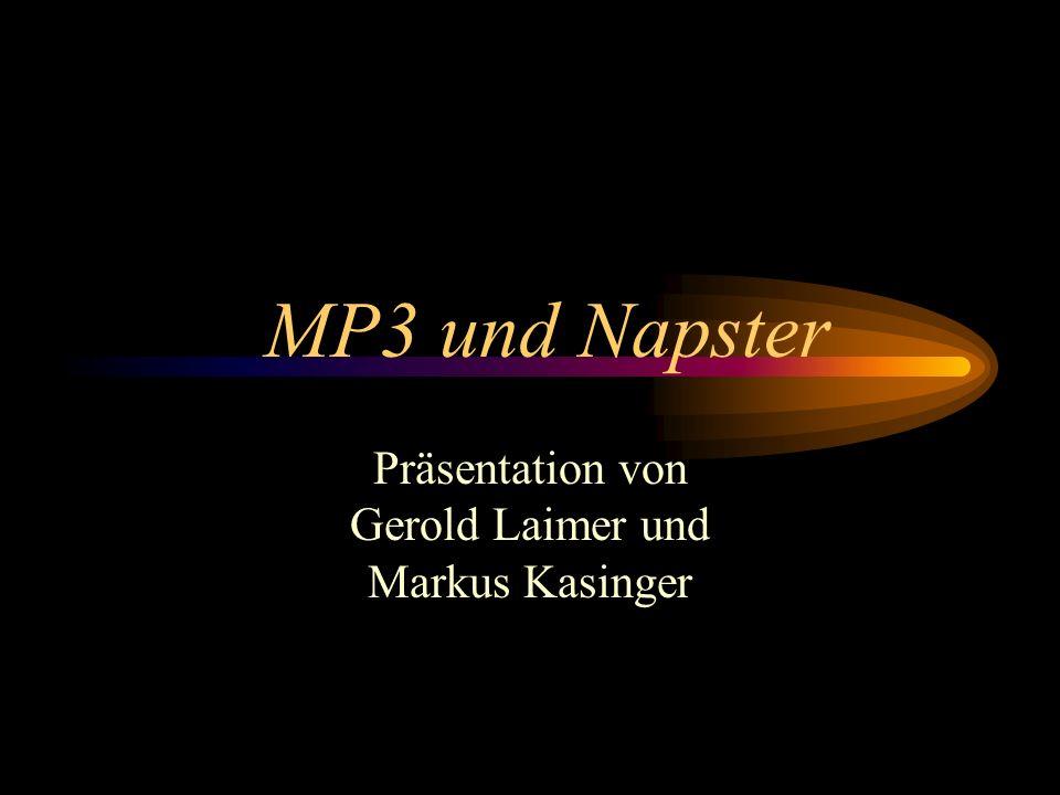 Präsentation von Gerold Laimer und Markus Kasinger