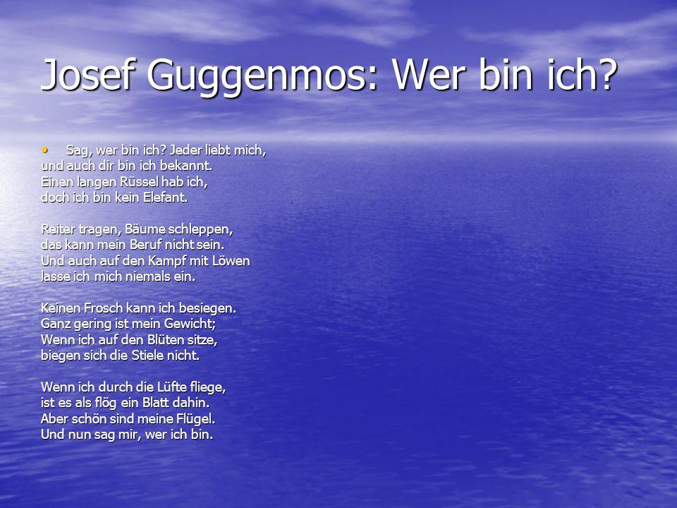 Josef Guggenmos: Wer bin ich