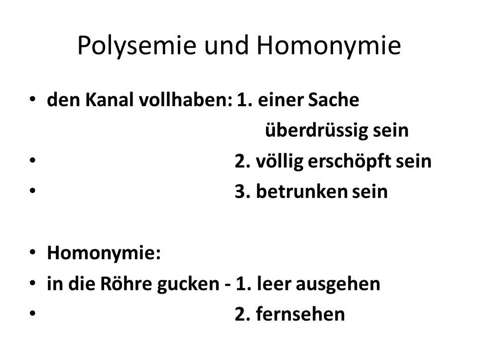 Polysemie und Homonymie
