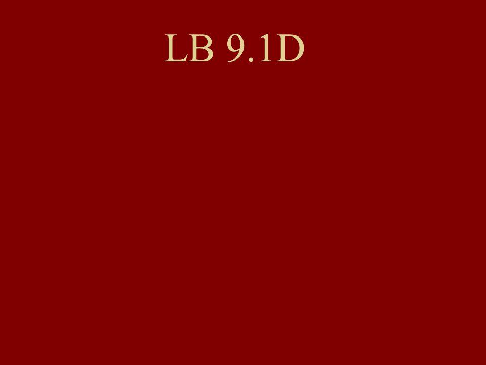 LB 9.1D