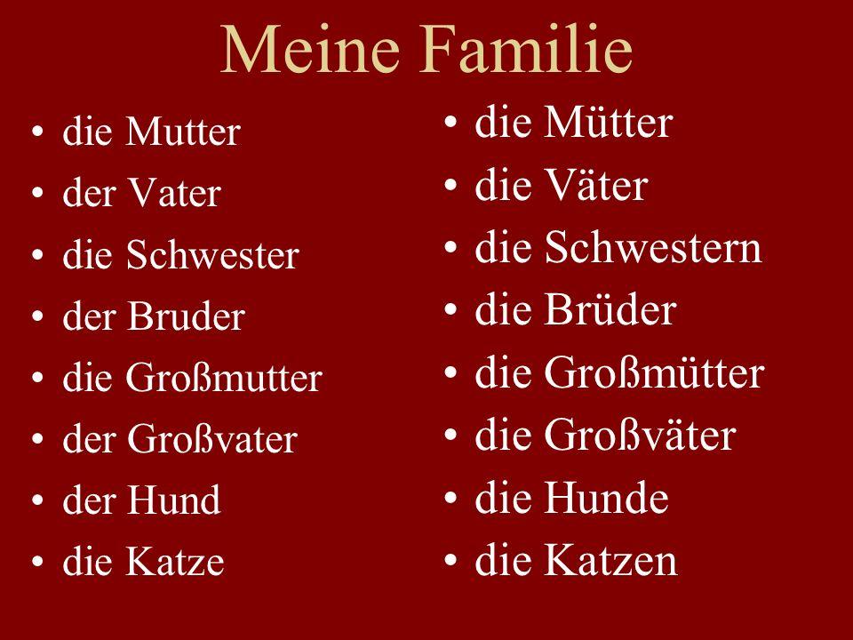 Meine Familie die Mütter die Väter die Schwestern die Brüder