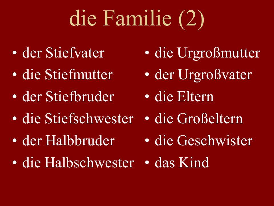 die Familie (2) der Stiefvater die Stiefmutter der Stiefbruder