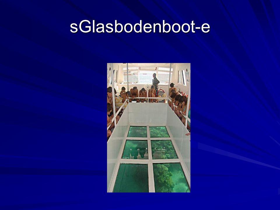 sGlasbodenboot-e